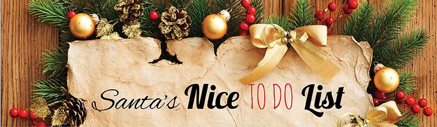 Santa's Nice To Do List