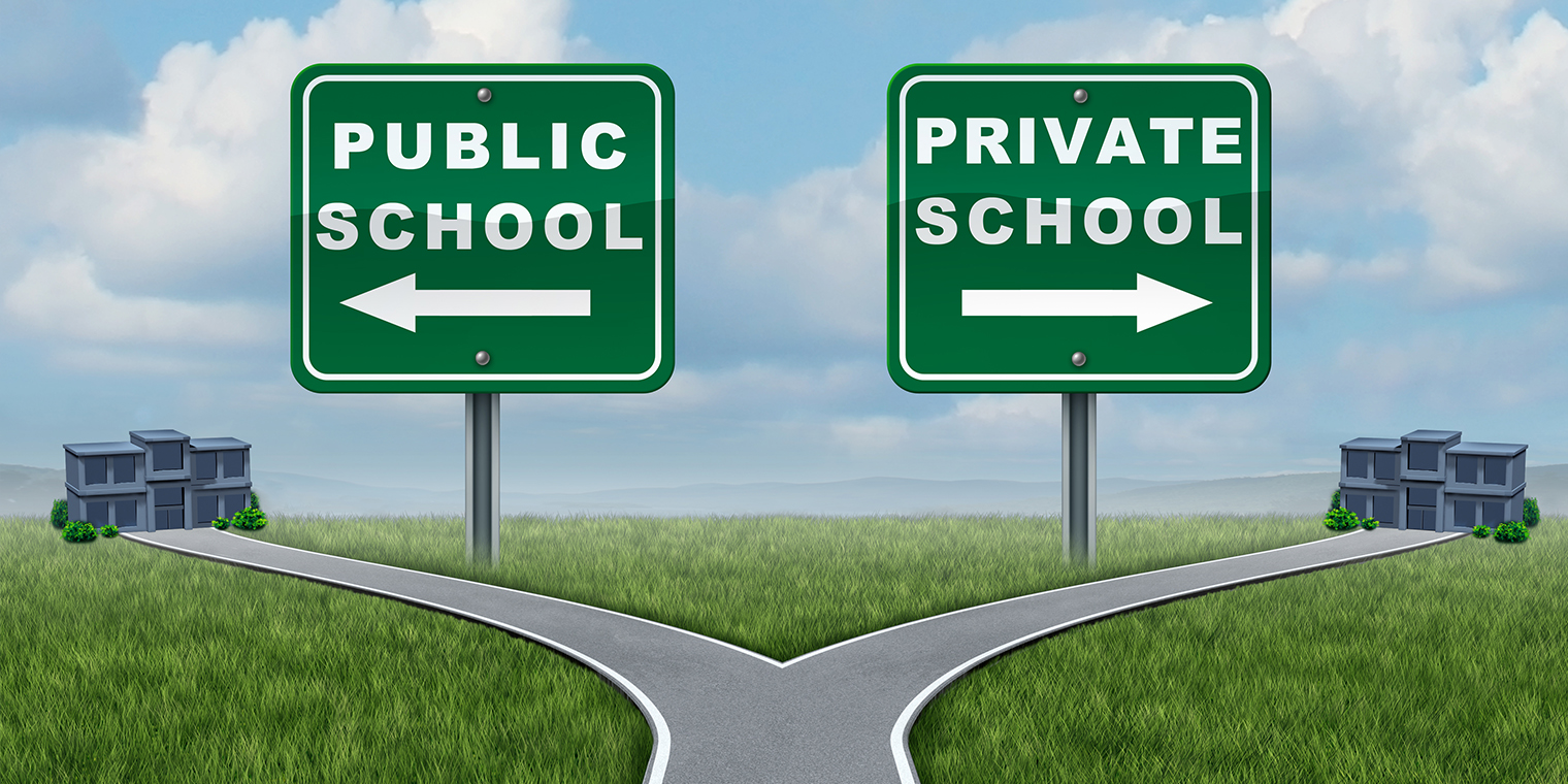 private school or public school