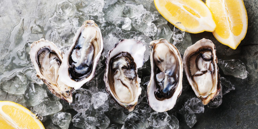 oysters_photo