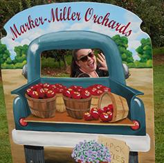 apple_picking_fun